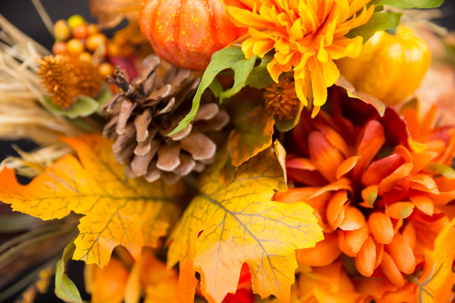 fall-flowers-2716513_1920.jpg