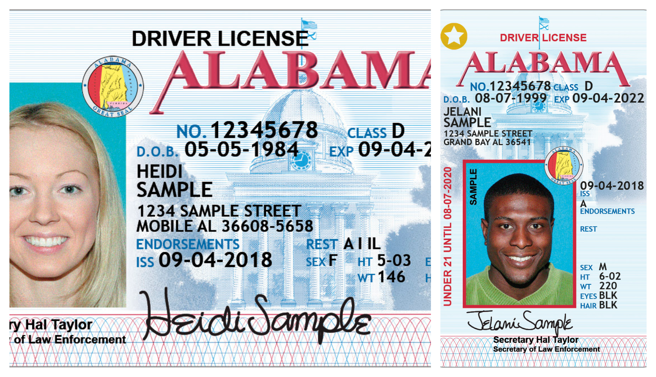 Beginning New Alea License Digit Numbers Driver's The 1 Dec Tribune Cullman To Add