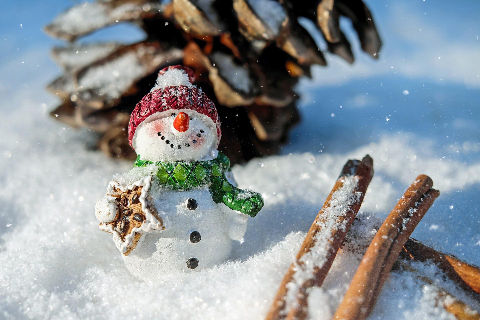 snowman-1882635_1920.jpg