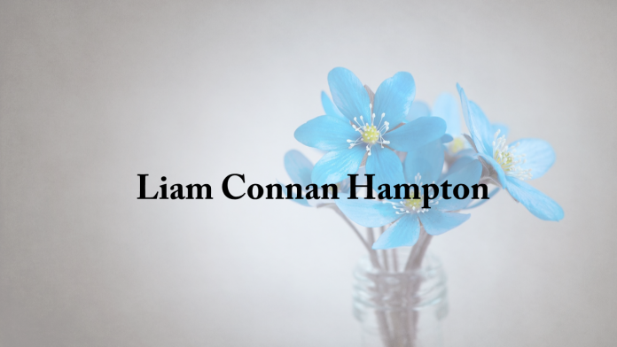 liam_connan_hampton.png